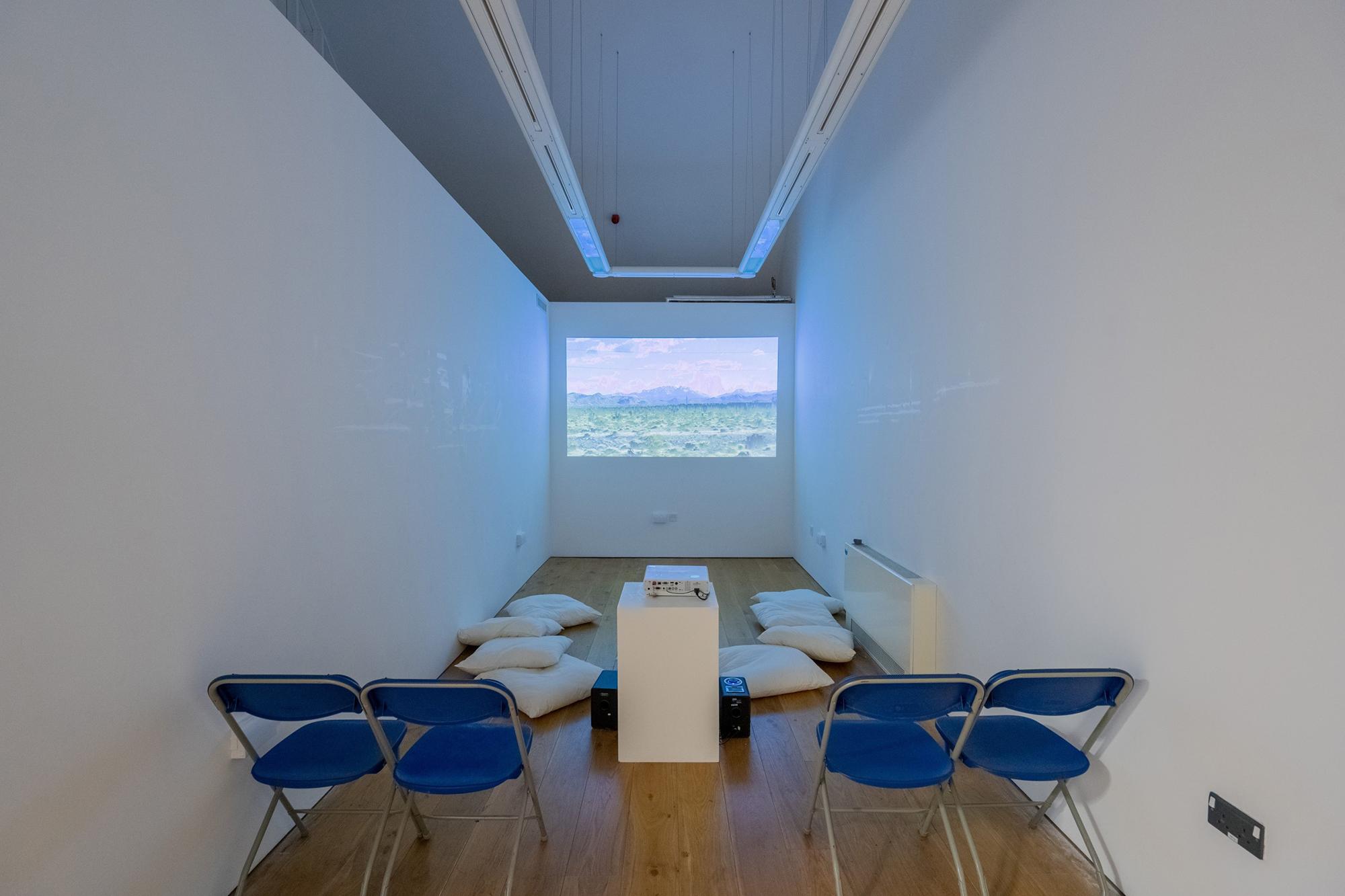 Foto fra Environmental Crisis udstillingen på Gerald Moore Gallery